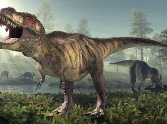 Novo parente do temido Tiranossauro Rex é descoberto