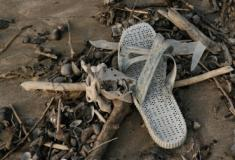 Micróbios podem ajudar a limpar o plástico dos oceanos