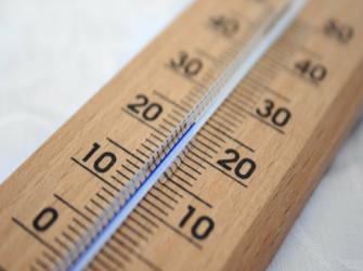 Você conhece a relação do metabolismo com a temperatura?