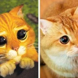 13 animais que se parecem com personagens de desenhos animados