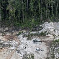 Registro do desmatamento da Amazônia brasileira atinge recorde