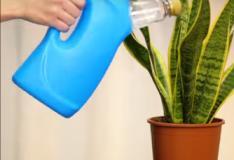 Como reaproveitar embalagens plásticas