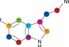 A ligação entre hormônios e felicidade