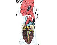O que é arritmia cardíaca: causas, sintomas e tratamentos