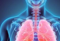 Cientistas criam primeiro 'líquido magnético', que pode revolucionar a medicina