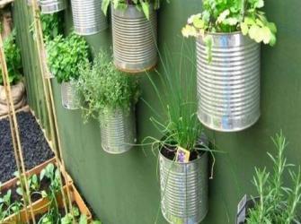 Aprenda a fazer uma horta vertical