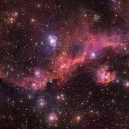 A anatomia da intrigante Nebulosa da Gaivota