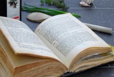 As ervas e plantas medicinais na literatura antiga