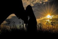 Cavalos extraordinários: descubra mais sobre esses animais incríveis
