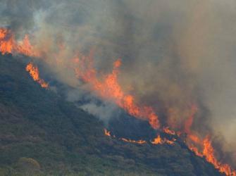 Mato Grosso lidera queimadas na Amazônia e ministro culpa criminosos