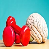 Veja como a ciência explica, musculação pode retardar demência e aumentar a inteligência.