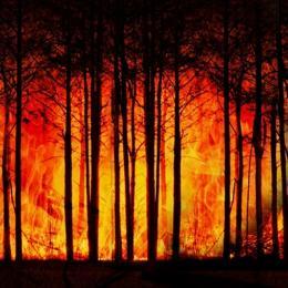 As alterações climáticas estão aquecendo a Europa