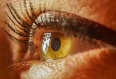 Má alimentação pode levar à cegueira
