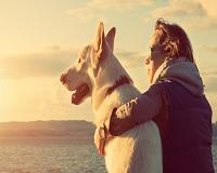 Saúde cardíaca: por que o seu cachorro é o melhor amigo do seu coração