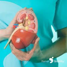 Brasil tem o maior sistema público de transplantes