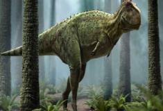 O primo brasileiro do Tiranossauro rex