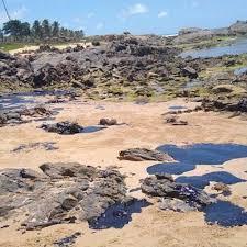 Governo pede esclarecimento a 11 países sobre origem do óleo