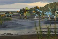 Novas pegadas de dinossauros encontradas no Alasca