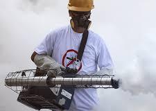Casos de morte por dengue aumentaram cinco vezes em relação ao ano passado