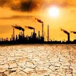 Mais de 11.000 cientistas declararam emergência climática