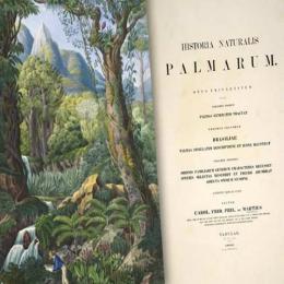 O primeiro documento sobre a história natural do Brasil
