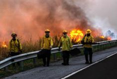Fotógrafo faz assombrosos registros dos incêndios florestais no Pantanal
