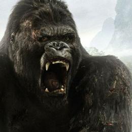 10 Filmes com Primatas