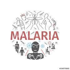 Brasileiros assinaram convênio para desenvolver remédios contra Malária