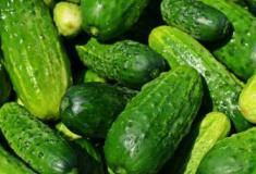 Os benefícios do pepino