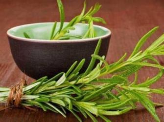 Benefícios do alecrim para a saúde