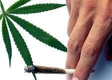 Estudo contesta uso da maconha no tratamento da dependência de cocaína