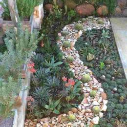 Como criar jardim miniatura