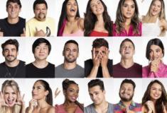 Na telinha: Big Brother Brasil 20