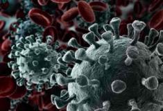 Quanto tempo os coronavírus resistem nas superfícies e como inativá-los