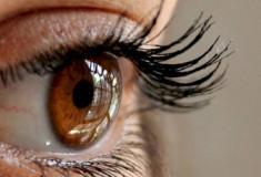 Exame de rotina no oftalmologista pode prevenir câncer nos olhos