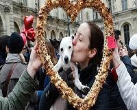 A ciência descobre o que torna os cachorros tão especiais