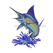 Óleo de peixe pode previnir doenças cardíacas e morte prematura