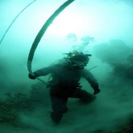 O meio aquático: Um bom lugar para se visitar, mas você gostaria de viver ali?