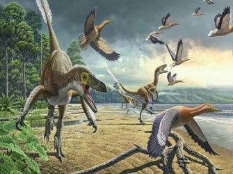 Será que os dinossauros conseguiam cantar como as aves?
