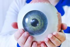 Principais doenças que podem levar a perda da visão