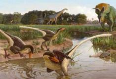 Revelado novo dinossauro emplumado: Dineobellator notohesperus