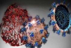 Medicamento experimental pode bloquear infecções por SARS-CoV-2 ( Coronavírus )