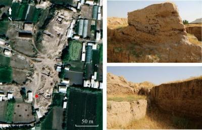 Descoberta na Ásia Central indica como o arroz chegou ao Ocidente