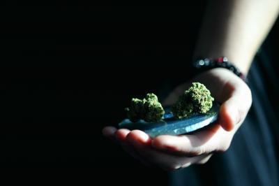 """App brasileiro, Highness é um diário de cannabis dedicado a documentar suas """"brisas"""""""
