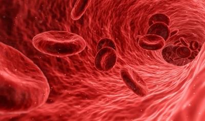 Lupa na Ciência: Estudo sugere que tipo sanguíneo interfere no risco de contrair Covid-19