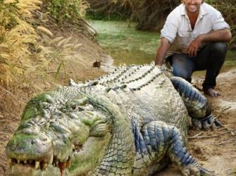 Crocodilo monstro de 3 pernas.