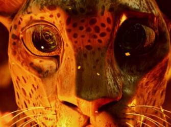 Moby pede atenção à preservação da Amazônia
