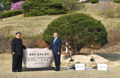 Kim Jong-un pede desculpas por morte de sul-coreano