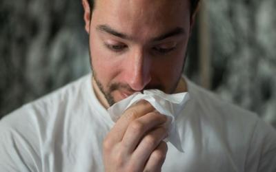 Cientistas identificam atributos físicos que ajudam a disseminar vírus