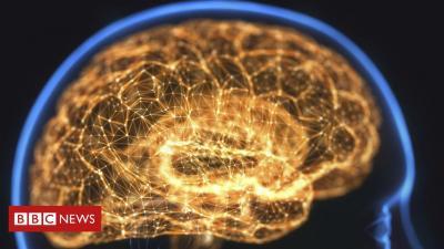 'Temos mais neurônios do que a galáxia tem estrelas': neurocientista explica por que o cérebro é 'estrutura mais complexa e enigmática do universo'